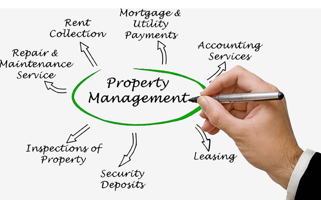Professional Property Management